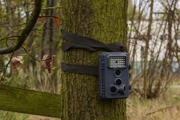 eine Wildkamera ist an einen Baum gebunden