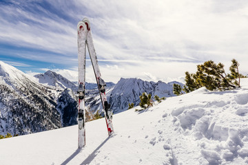 Skis standing upright in the snow