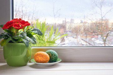 Spring background with red primrose flowers in pot and Easter eggs on the window with raindrops, space