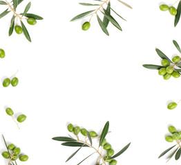 Olive border on white.