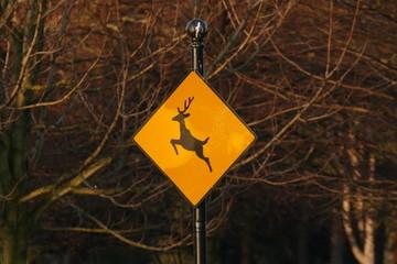 Attention aux cerfs : panneau de signalisation routière