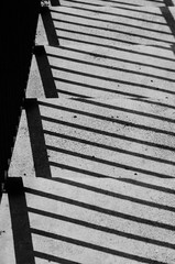 stairs and shadow of fence (black and white)