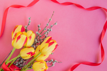 Yellow tulips and willow branches on a pink background