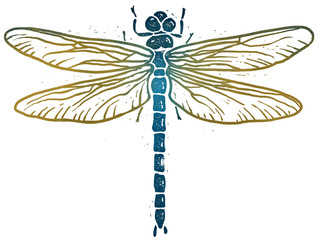Dragonfly linocut illustration, isolated on white with clipping path