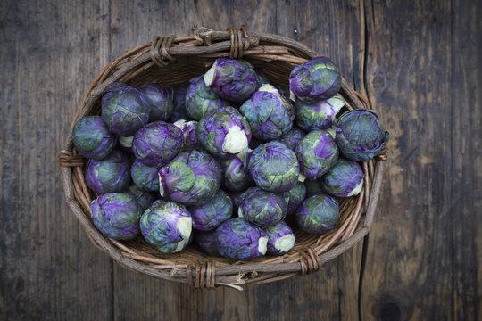 Purple brussels sprouts in basket