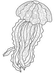 Medusa antistress coloring. Marine animal vector