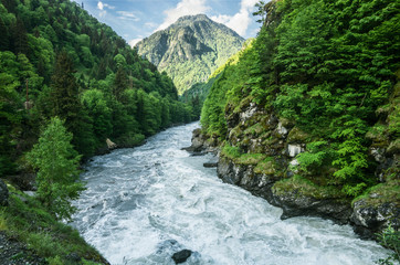 The mountain river flows between the woods of rocks. Mountain landscape..