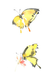 A graceful yellow butterfly sits on a flower. Yellow-black butterfly in flight. Watercolor drawing butterfly.