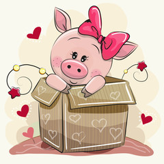 Cute Cartoon Piggy girl and a box