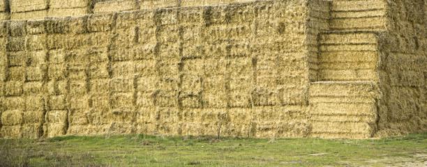 Straw bale field