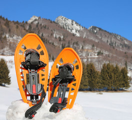 orange snowshoes in winter in mountains
