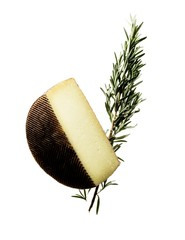 Cheese block with rosemary sprig on white background