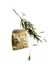 Cheese wedge with rosemary sprig on white background
