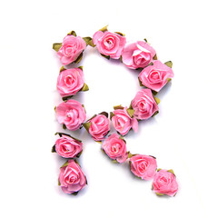 Letter R of English alphabet of pink roses on white background