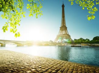Fototapete - spring time in Paris, Eiffel tower