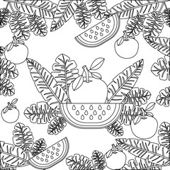 orange with leafs and watermelon pattern vector illustration design