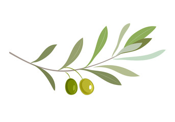 Olive oil label or logo for farm store or market. Olive branch with leaves and olives. Retro emblem organic olive oil vector illustration isolated on white background.