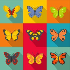 Types of butterflies icons set. flat set of 9 types of butterflies vector icons for web isolated on white background
