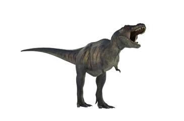 3D Illustration of a Dinosaur Tyrannosaurus Rex on white background