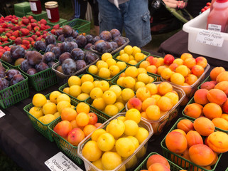 Organic Fruits and Berries at outdoor Farmers Market