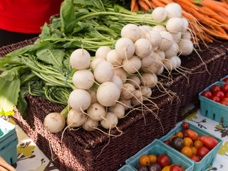 White radishes for sale at Farmers Market