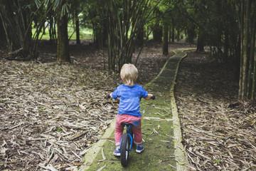 Little boy with bike in park