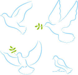Set vier Grafiken Tauben