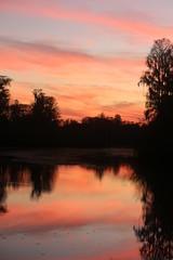 Florida  Swamp Sunset