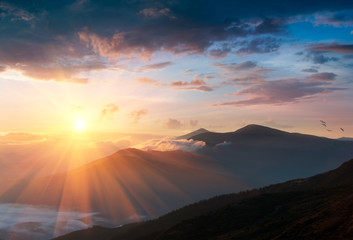 Panoramic landscape of mountains at sunrise. View on covered by forest foggy hills.Traveling concept background.
