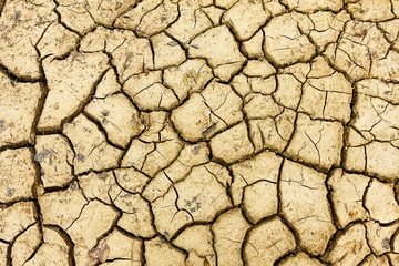 Cracked dry soil after disaster