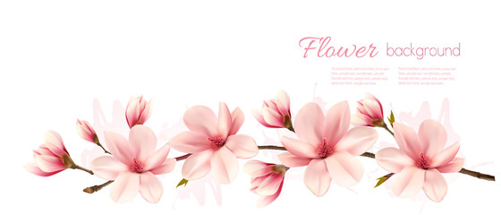 Nature spring background with beautiful magnolia branches. Vector.