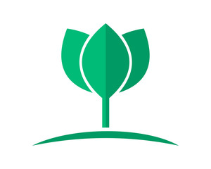 green lotus flower flora floral plant nature image vector icon