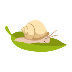 snail  cartoon  vector illustration flat style  profile