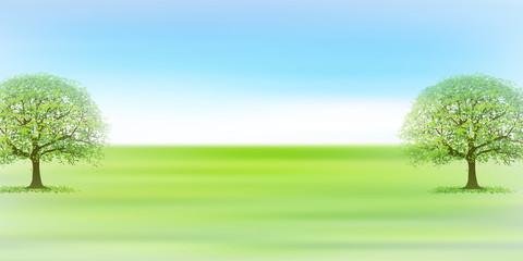 新緑 草原 風景 背景