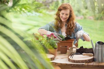 Blog about gardening equipment