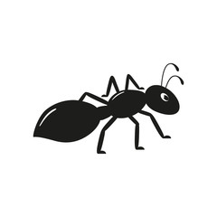 Black ant on the white background. Graphic vector image