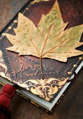 Dry autumn leaf on an old style books