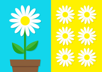 White daisy chamomile icon set. Flower pot. Cute plant collection. Love card. Camomile Growing concept. Flat design. Bright blue yellow background. Template Isolated.