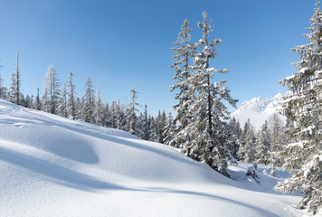 Fototapete - Winter scenery in Austrian Alps