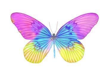 Яркая бабочка с большими разноцветными крыльями, изолирована на белом фоне