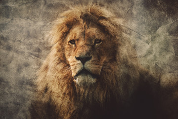 Wall Mural - Majestic lion in a vintage portrait.