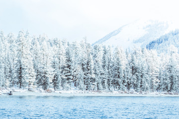 Fotobehang Bergen Winter mountain lake with snow-covered pine trees on the shore. Frosty weather, fog over the winter lake, a sharp decrease in temperature. A number of snow-covered trees on the river.