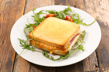 grilled toast with ham and cheddar