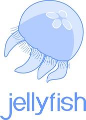 Blue jellyfish or Aurelia aurita on white background with title