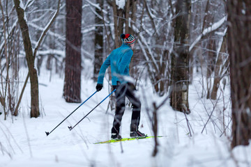 Photo from back of male skier in forest in winter