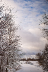 Photo of snowy landscape with cloudy sky