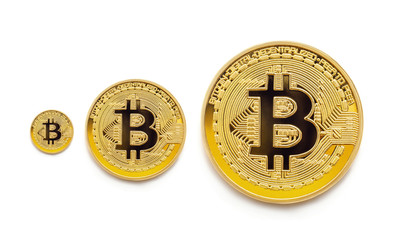 a lot of various coins of bitcoin show a growth or decrease in prices for crypto currency in the world market
