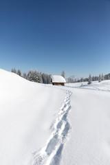 Wall Mural - Fußspuren zur Schihütte. Winterlandschaft mit viel Schnee