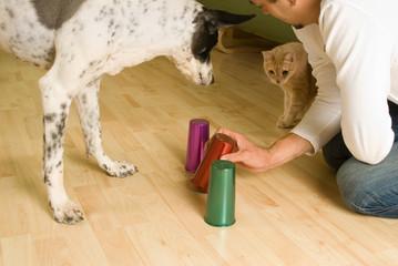 Mann spielt mit Hund Hütchenspiel