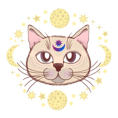 Vector with a cat, moon, stars. Magical and fairy. Suitable for postcards, printing, posters, textiles.